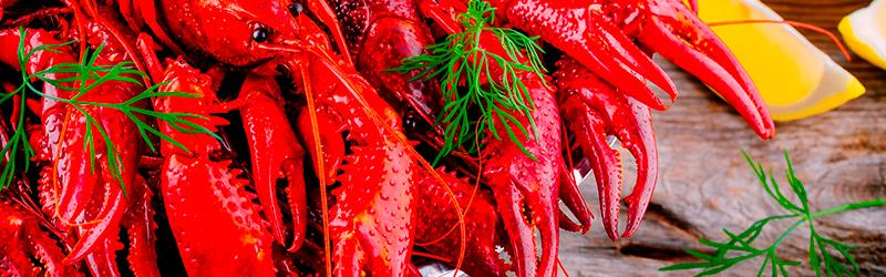 crayfish party Oulu